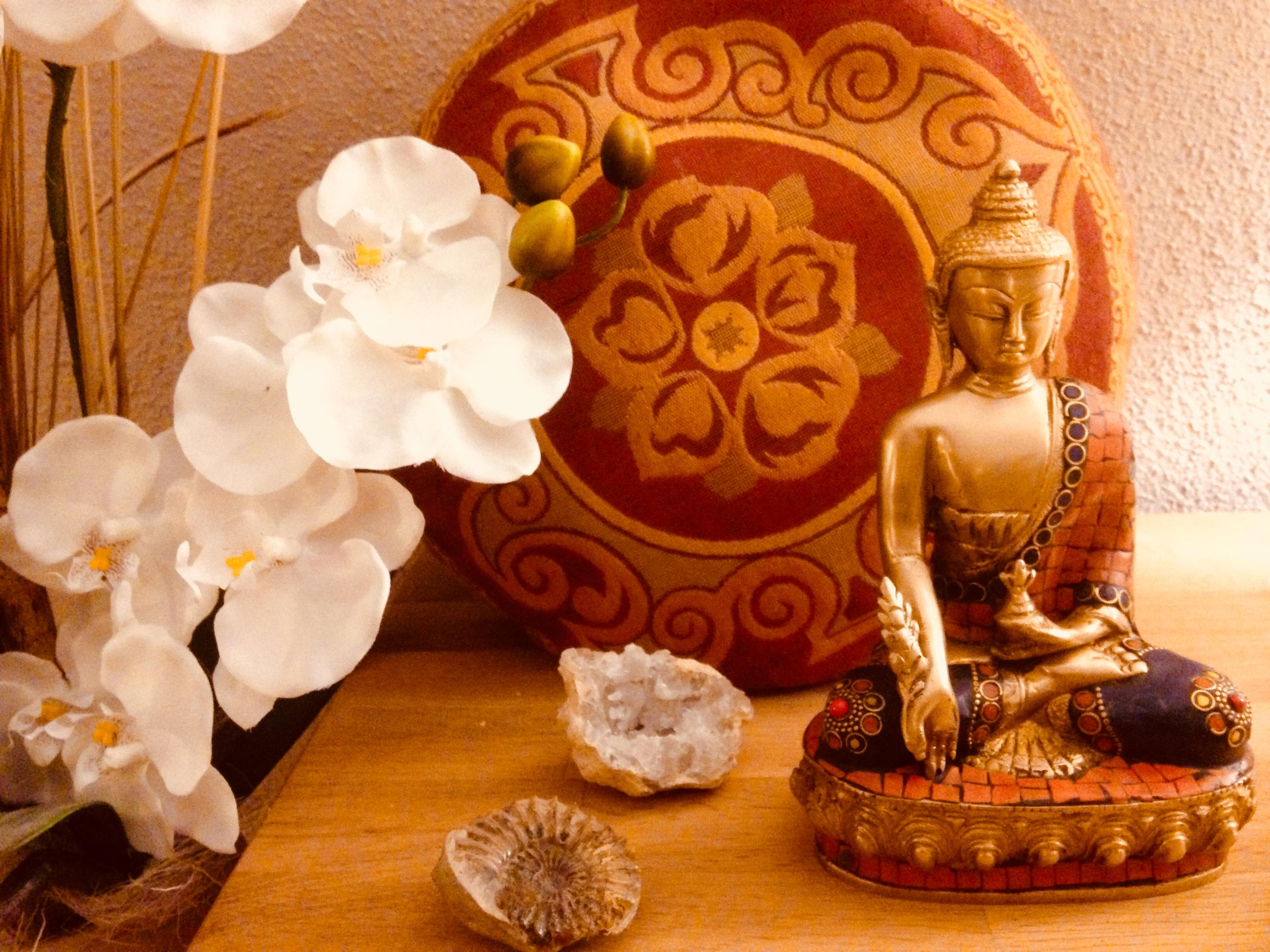 Meditation Stilles Qigong Passau Wegscheid